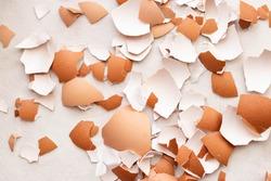 Eggshell on white background, eggs isolated