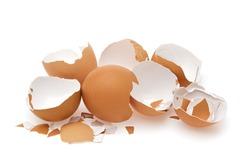 Eggshell. Shell of eggs on white.