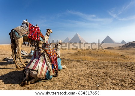 Egypt. Cairo - Giza. General view of pyramids #654317653