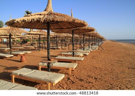 stock-photo-egyptian-sunbeds-on-the-beach-48813418.jpg