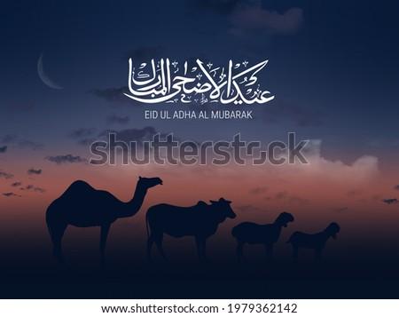 Eid al-Adha Mubarak calligraphic inscription translated into English as Feast of the Sacrifice. The sacrifice of camel cow sheep and goat.  Translation from Arabic: Eid al-Adha