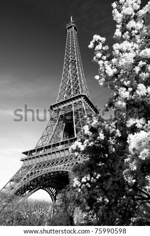 Eiffel tower in black and white style paris france stock photo
