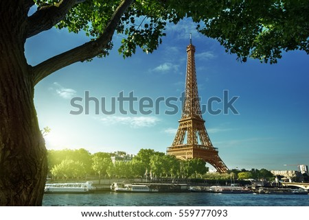 Eiffel tower, Paris. France #559777093