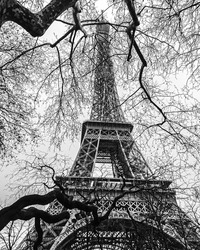 Eiffel Tower photographed from underneath through trees without leaves on March 2020.