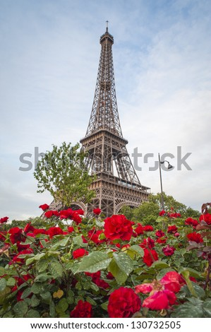 Eiffel Tower rising behind red roses, Paris, France