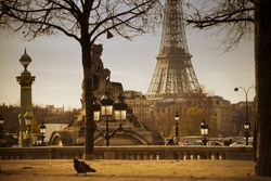 Eiffel Tower seen from Tuileries Garden in Paris, France..