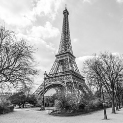 Eiffel tower, view from Champ de Mars in Paris, France (black and white)