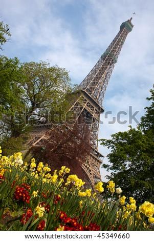 Eiffel Tower with flowers, Paris