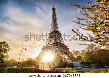 Shutterstock Eiffel Tower with spring tree in Paris, France