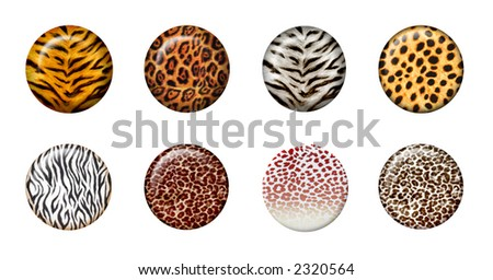 Eight African wild animal skins in 3d button