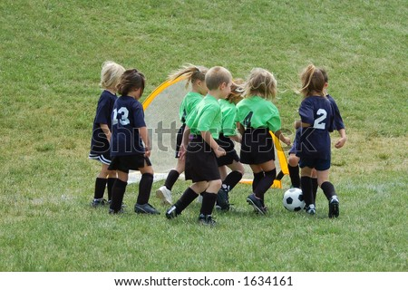 Eight soccer players in a youth league game.