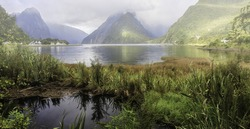 Eighth Wonder of New Zealand. MilfordSound.