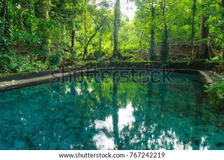 Shutterstock El Ojo de Agua is natural spring pool on Ometepe Island in Nicaragua.