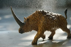 Elasmotherium on a water spray background. closeup dinosaur and monster model.  Elasmotherium is an extinct mammal that lived in the Pleistocene Period of Russia, Ukraine, and Moldova.