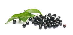 Elderberries, danewort, dwarf elder, walewort berries with green leaves, isolated on white background