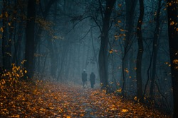 Elderly couple silhouettes walking away on a pathway at the autumn foggy park among high trees with yellow leaves.