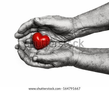 elderly woman holding red heart in her palms, symbol of care and love, isolated on white background