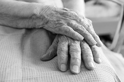Eldery woman hands