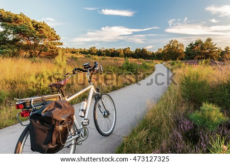 Electric bicycle in Dutch national park The Veluwe with blooming heathland, The Netherlands