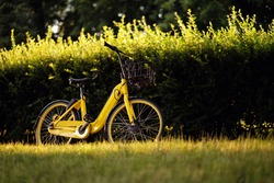 Electric bike, yellow electro bicycle, ebike in park
