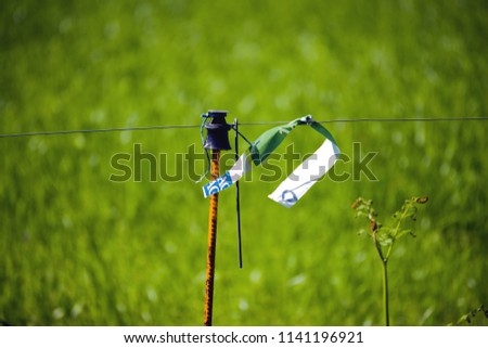electric fence detail #1141196921