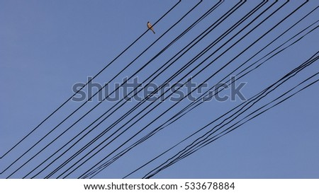 electric line , background sky #533678884