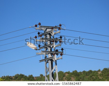 electric poles and electric wires #1565862487