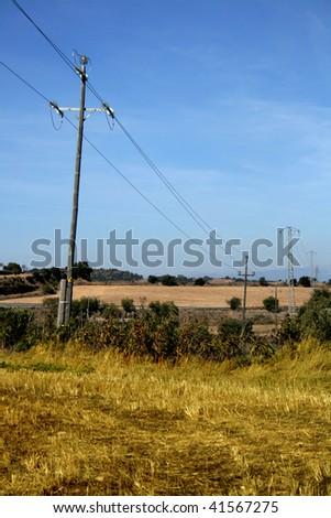 electric posts on a rural landscape #41567275