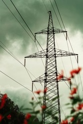 Electric power transmission lines. High voltage post. Industrial landscape and flowers in the foreground. Electricity pylon at sunset sky on the background. Electric distribution station