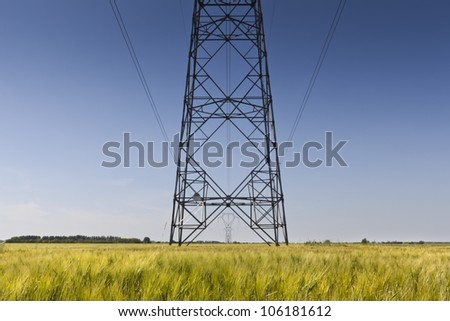 Electric pylon row in the middle of a corn field