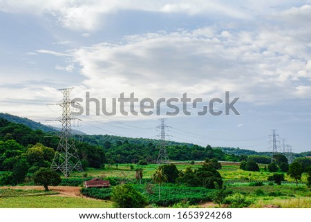 Electricity pole against sunset sky, Transmission line of electricity to rural with green tree, High voltage electricity pole with nature background, electricity transmission pylon