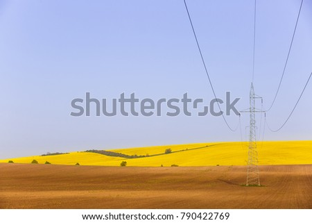 Electricity powerlines over vibrantly colorful rapeseed fields. Power supply, agriculture mass production, modern industrial landscape concept and background with copy space.  #790422769