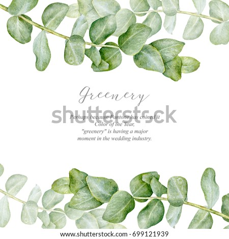Elegance watercolor greenery. Floral frame. Watercolor greenery. Isolated on white.