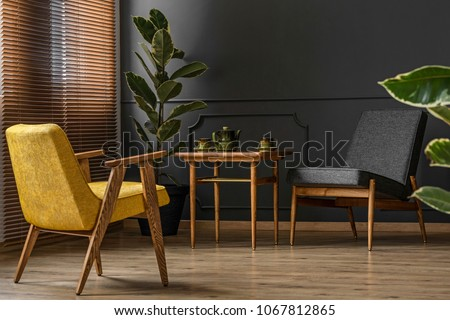 Elegant and dark apartment interior with classic wooden furniture and a large potted plant next to blinds and a black wall with molding