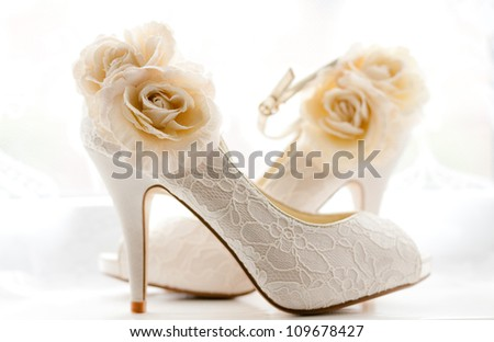Elegant and stylish bridal shoes.