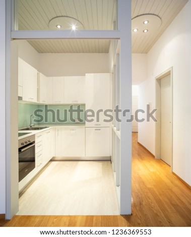 Elegant apartment with kitchen and living room with parquet floors. Nobody inside