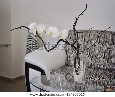 Elegant, beautiful composition from orchids with a branch in a transparent vase