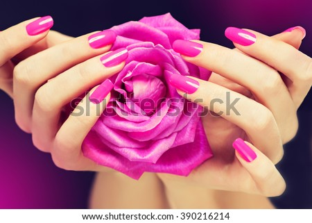 Elegant female hands with pink manicure on the nails . Beautiful fingers holding a rose .