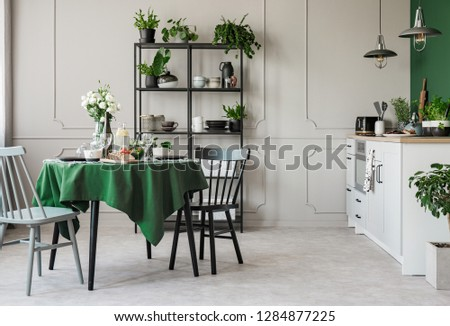 Elegant grey and green kitchen in tenement house