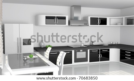 Elegant kitchen Design in black and white colors