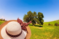 Elegant lady's hat on a green field background. Magnificent blooming spring. Lovely warm day. Fields of flowers in the bright southern sun. Israel, Negev desert.