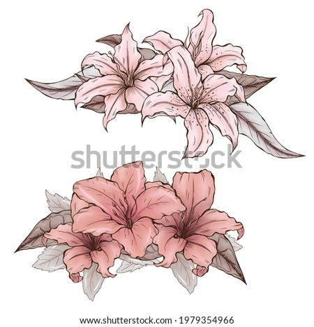 Elegant lillies, pink garden flowers illustration, wedding design elements, vintage style botanica Foto d'archivio ©