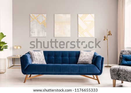 Elegant living room interior with a comfortable big blue velvet sofa and gold decorations. Real photo. #1176655333