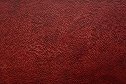 Elegant stylish dark brown bumpy leatherette background. Seamless texture. Element for interior. Free space for text or advertisement.