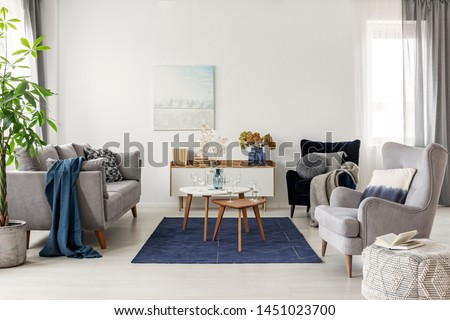 Elegant white, grey and blue living room interior with scandinavian sofa and velvet armchair
