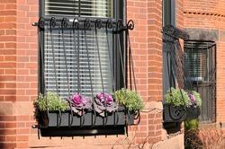 Elegant window grill on brownstone house