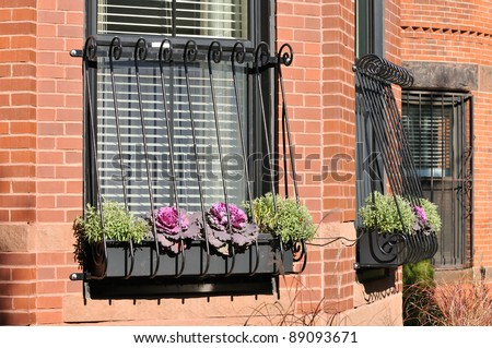 Elegant window grill on brownstone house
