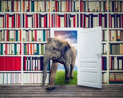 Elephant against book shelf in library