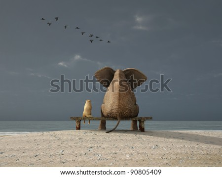 elephant and dog sit on a beach