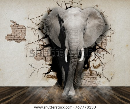 elephant coming out of the wall....